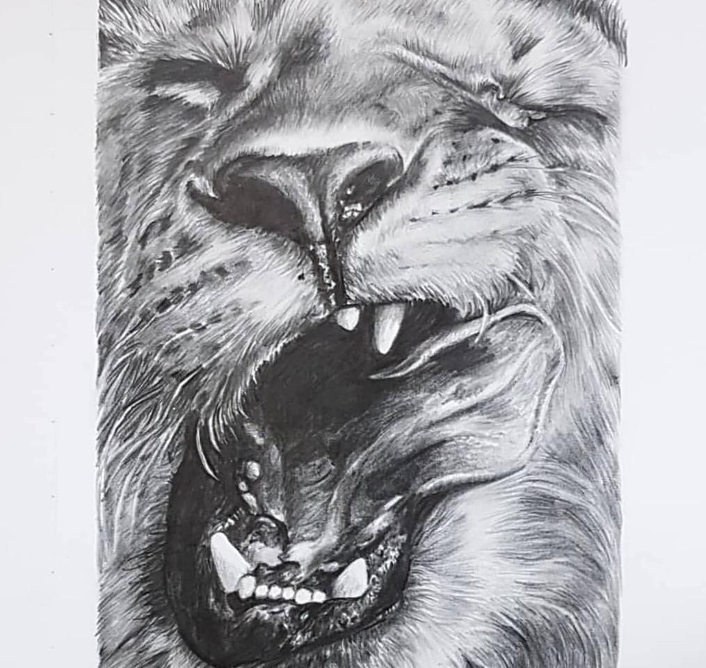 Wild series Lion by Rachel Baker Artist