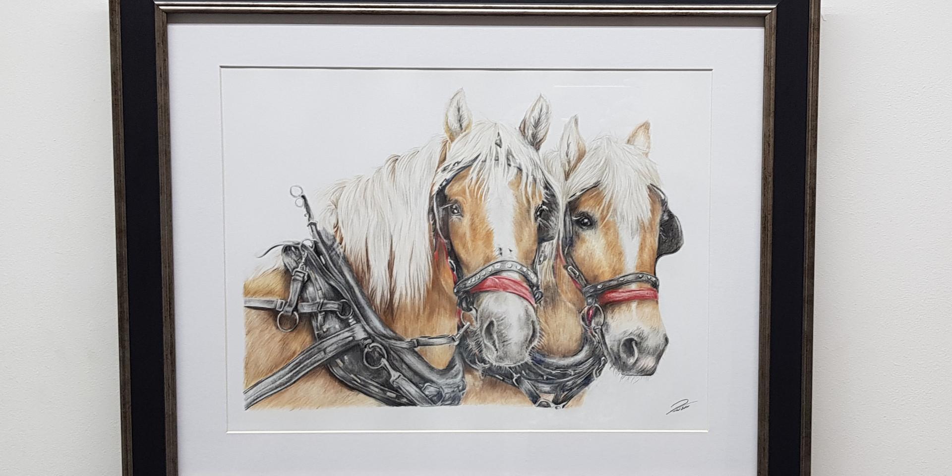 Sliegh Horses by Rachel Baker Artist
