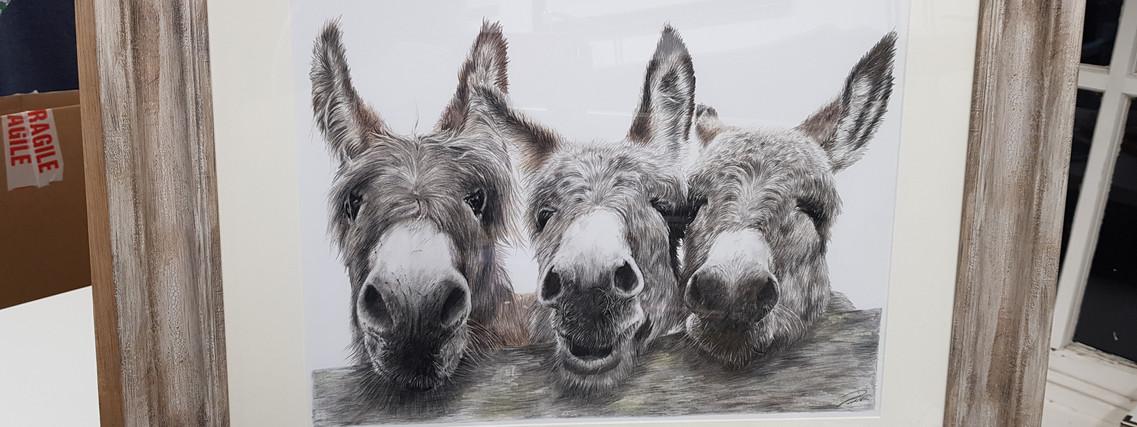 Donkeys by Rachel Baker Artist