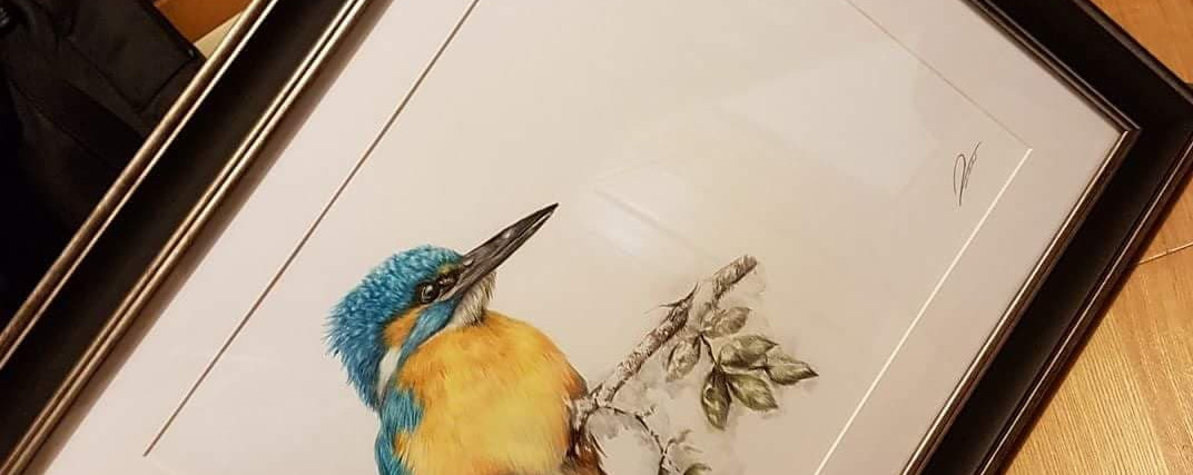 Kingfisher by Rachel Baker Artist