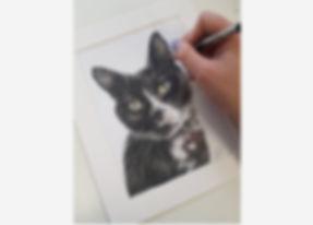 Rachel Baker Artist Cat Drawing