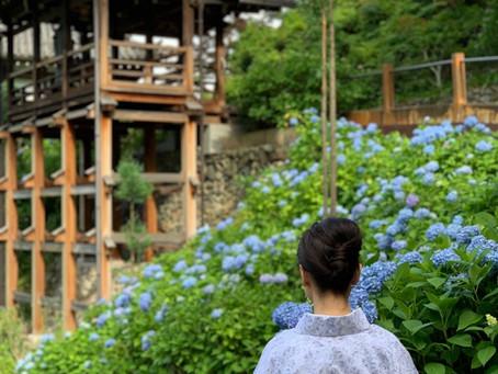 京都西山に紫陽花を訪ねて②善峯寺