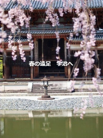 大阪枚方着物着付け教室サロン・ド・ヴィーヴル春の遠足