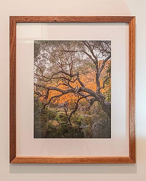 Picture Frame, 4 X 5, Meranti