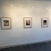 overzicht expositie Kijkers