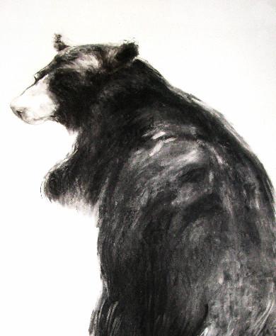 Big Bear nr. 2 'Air'