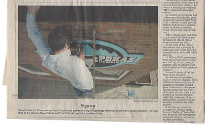 Newspaper Clippings 8.png