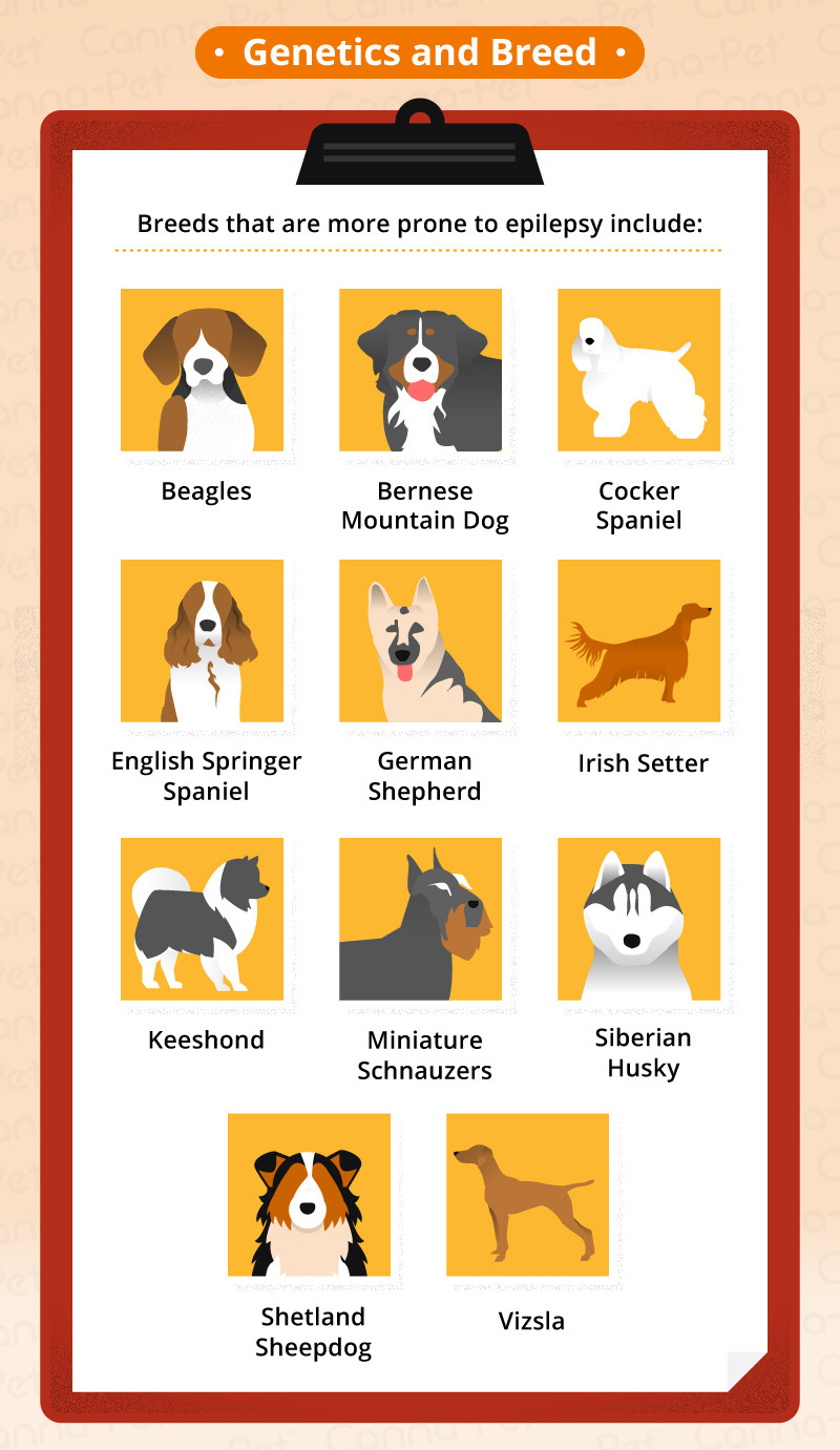 Φυλές σκύλων με προδιάθεση