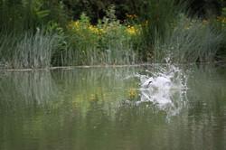 fishing+019.jpg