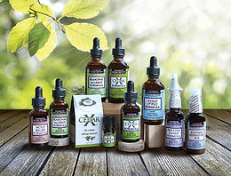 cedar x, cedar allergies, juniper allergy, south texas allergy, cedar pollen, cedar fever, cedar x formula, cedar x drops