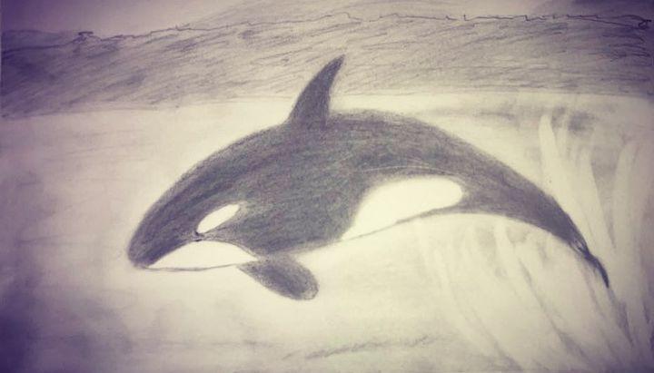 L'énergie des orques