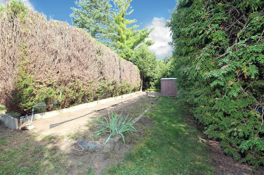 Back Yard (2).jpg