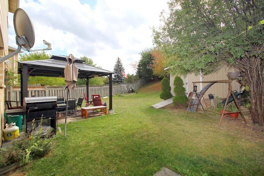 Backyard (2).jpg