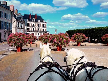 Reprise des promenades en calèche au Château de Blois
