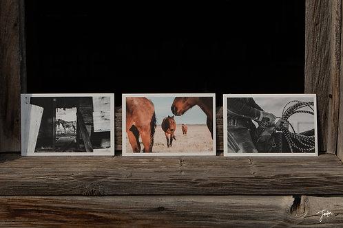 Mini Trios of the American West