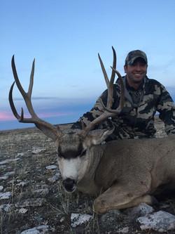 Wyoming Guided Mule Deer Hunt