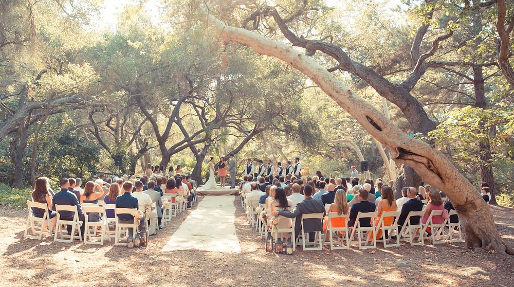 pure joy catering brunch wedding