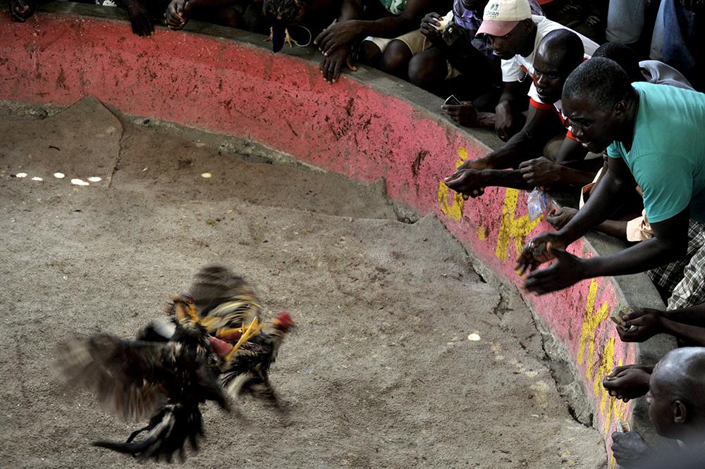 Reportage-photo-a-haiti-port-au-prince-79