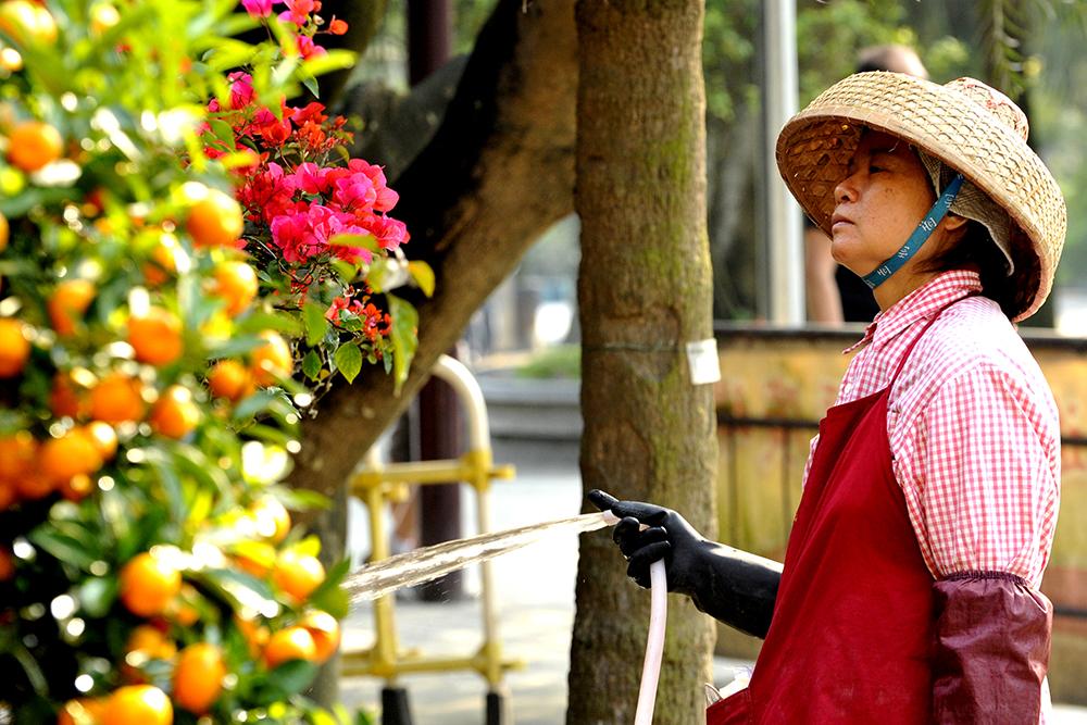 reportage-photo-a-hong-kong-chine-8