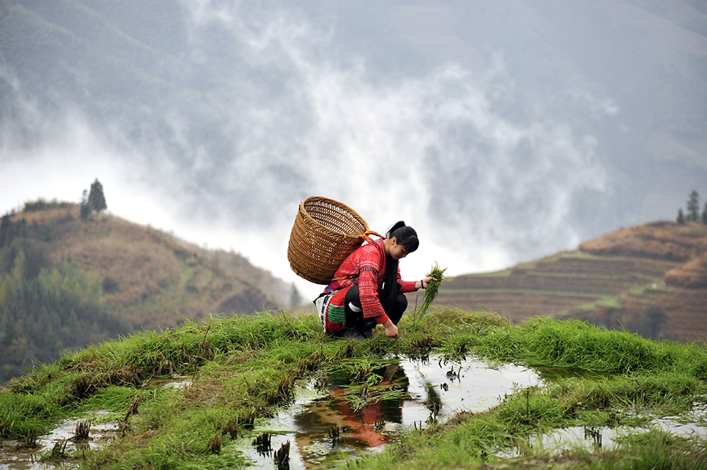 reportage-photo-chine-ping-an-gullin-