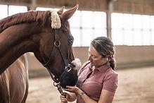 Horseandphysio-Physiotherapie-Sportpfer-Maud