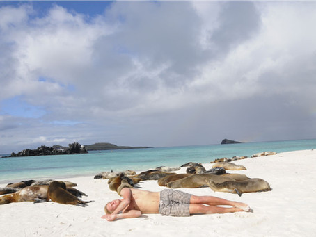 What to expect in a Galapagos Beach