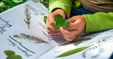 child-nature-journal-leaves-outdoor-lear