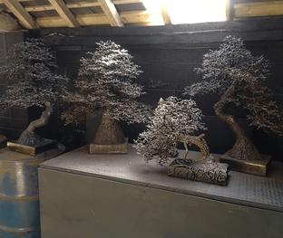 Tree sculptures on display at my workshop.