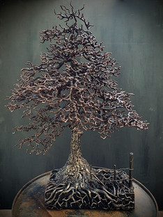 Windermere Pine