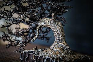 The Dragon Detail