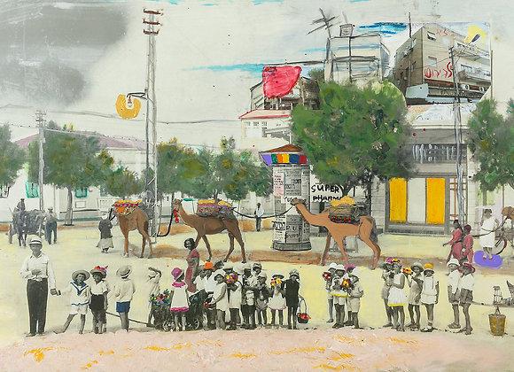 Camels in Jaffa