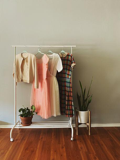 Liked_Dresses_onRack_Plant.JPG