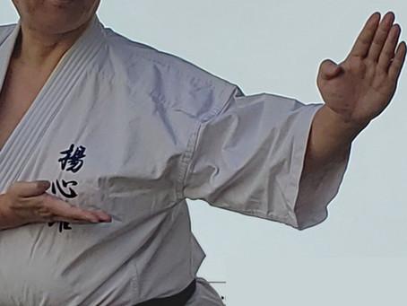 揚心館カラテ『 壮鎮(ソーチン)』研究