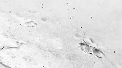 footprints_0445