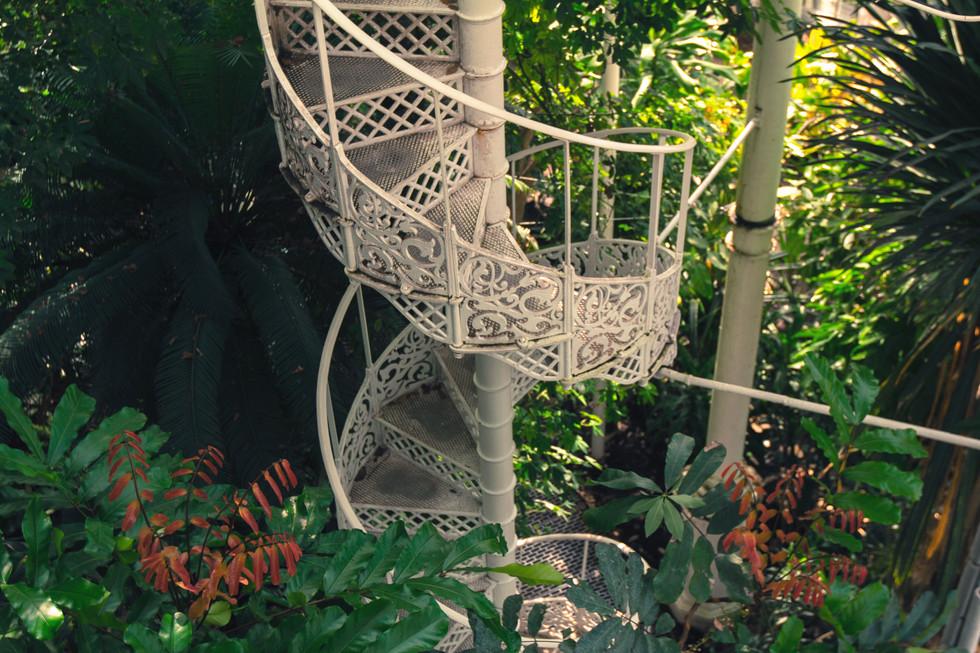 Botanical Garden Palmenhus