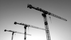 three_cranes_7122
