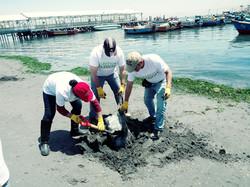 Voluntariado Green Passion ONG