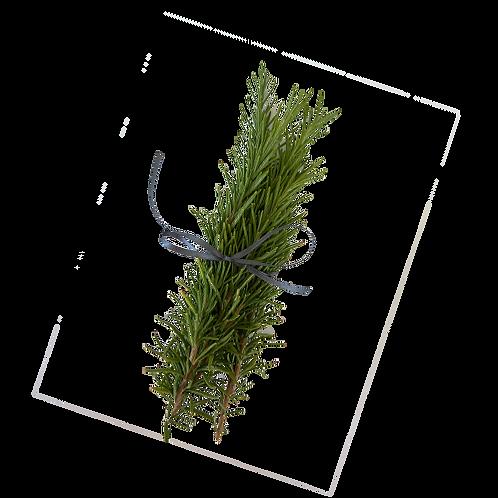 5 Sprigs of Fresh Rosemary