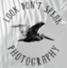 Look Dont Speak Photography.PNG