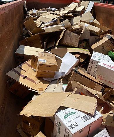 one love cardboard.JPG