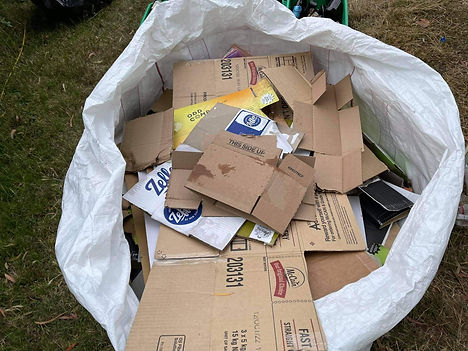 Cardboard.jpeg