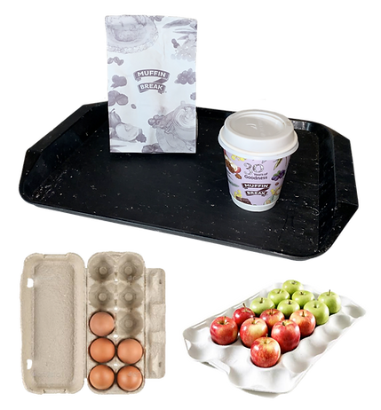 tray and cartons.png