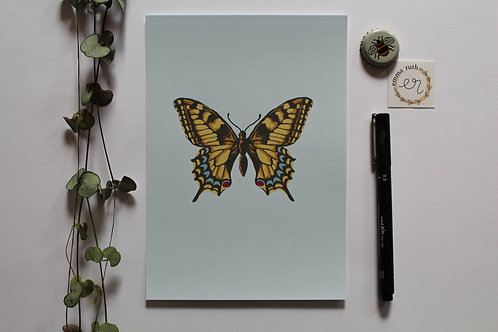 - The Butterfly Print - (Available in 2 sizes)