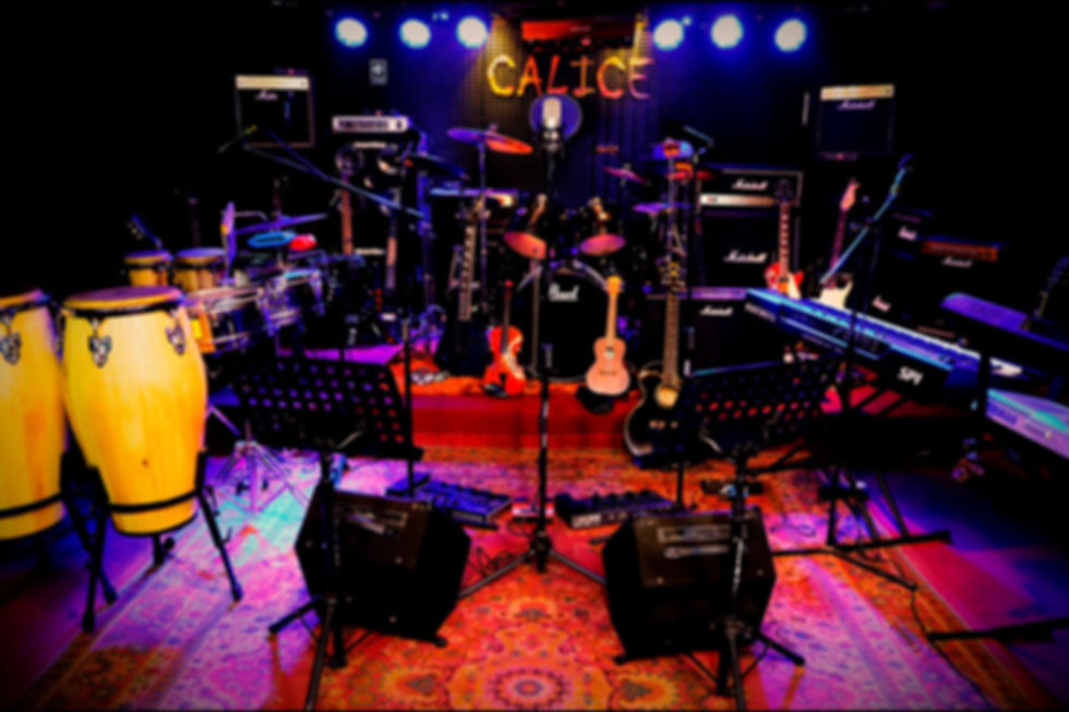 Servicio Técnico de Instrumentos Musical