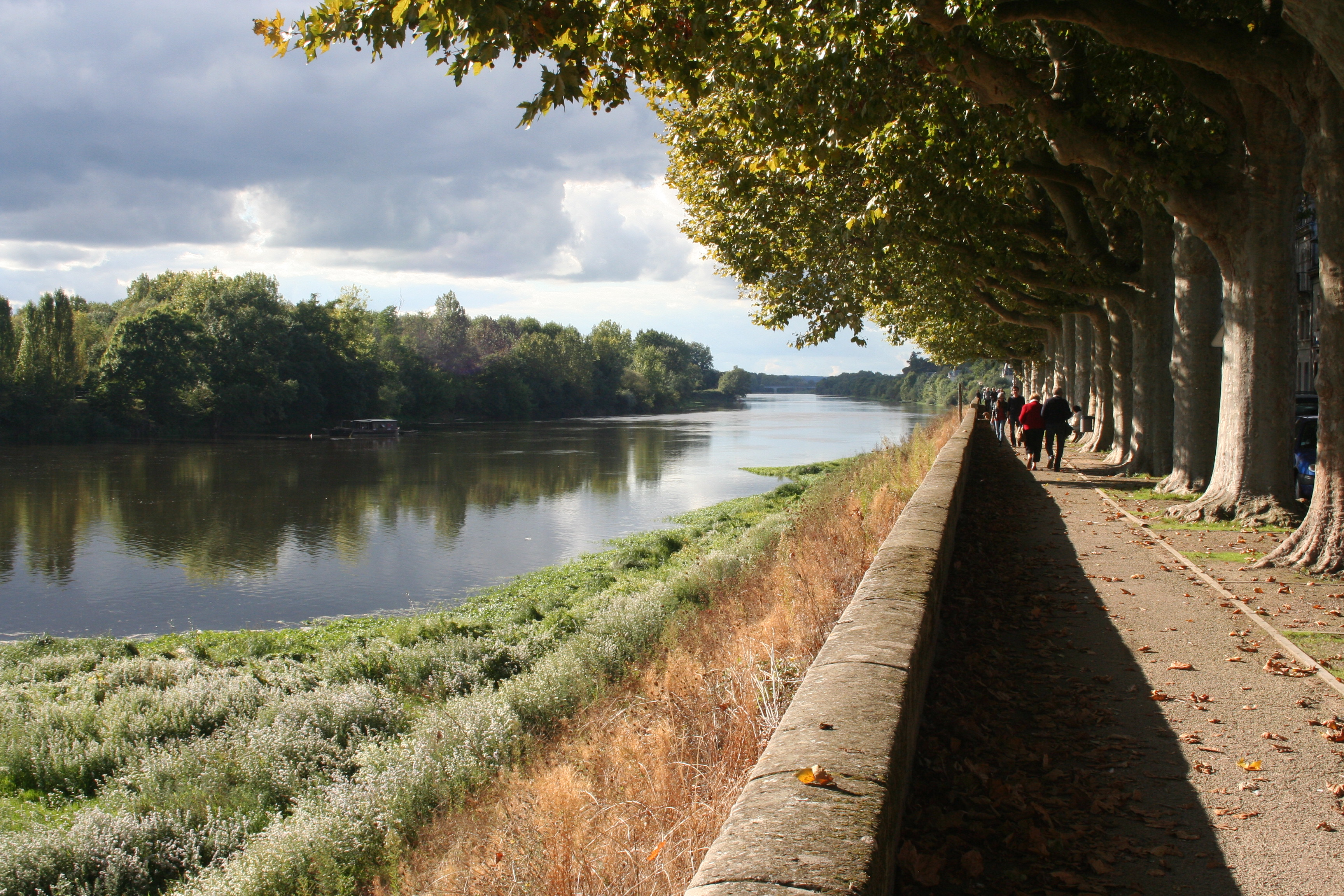 Vienne River in Chinon