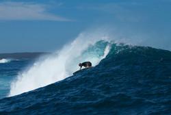 Surfing WA's raw power