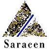 Saracen-Mineral-Holdings-Limited-logo.jp