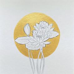 Geboortebloem Juli - Waterlelie door Carole Matthijsse