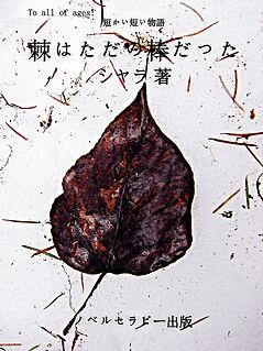 シャラ表紙web.jpg