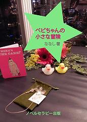 wベビちゃんの小さな冒険.jpg